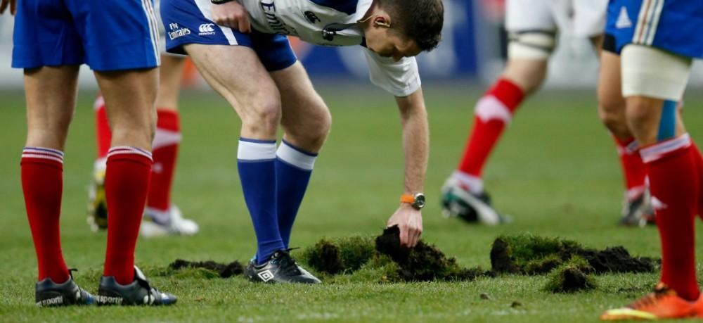 rugby-terrain-pelouse.jpg