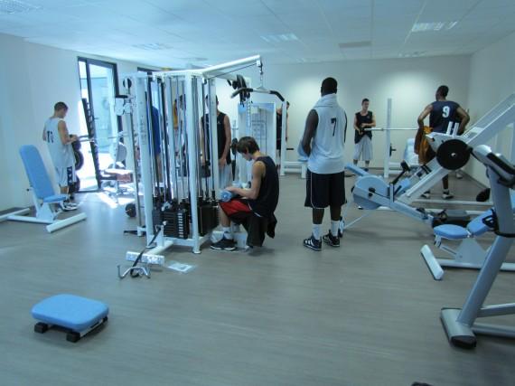 http://www.info-stades.fr/wp-content/uploads/2011/09/Vacheressemusculation.jpg
